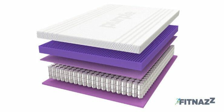 Purple Sturdiness